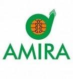 Client_Amira